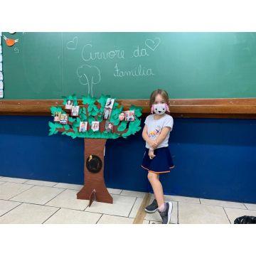 Infantil 5 (Vespertino) - Árvore da família